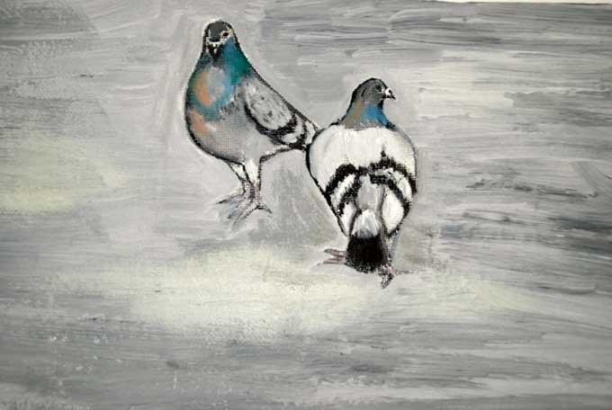 Confessions d'un pigeon pigeon3