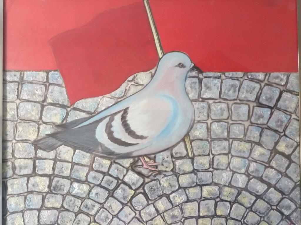 Pigeon rouge